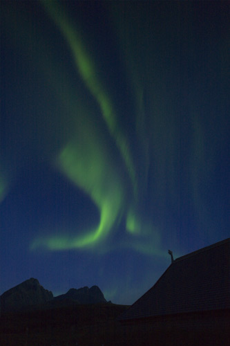 Aurora over Viking longhouse